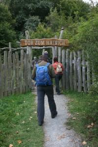 Exkursion Hainich - 2012